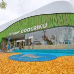 ペットショップCoo&RIKU リニューアルオープンの福岡西店へ行ってきました!