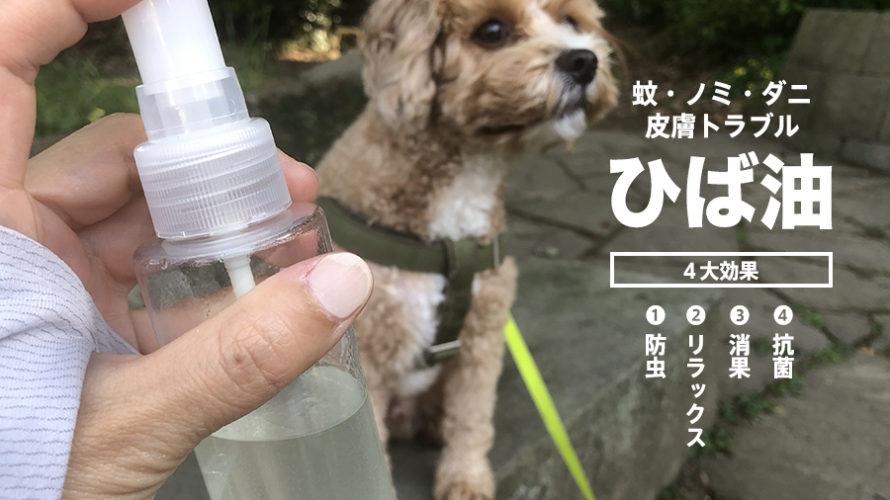 犬の皮膚病や虫除けに!【ひば油】を実際に試したらうれしい効果がありました。