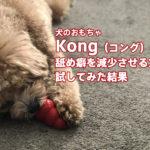 犬の舐め癖に有効!?おもちゃの『コング』を試してみました。