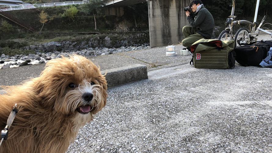 愛犬とお出かけ 大分県 メイプル耶馬サイクリングロード