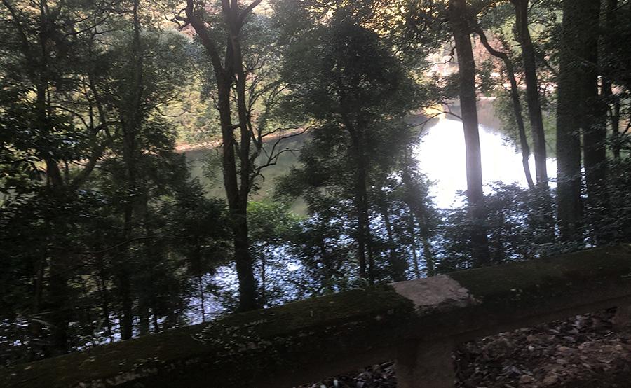山神社から見える曲淵ダム