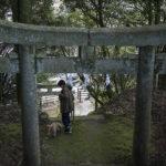 2020年初詣に行ってきました。【福岡市 曲渕城跡 山神社】