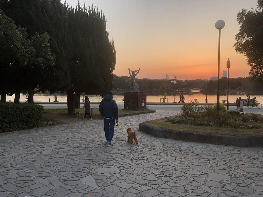 大濠公園の夕焼け
