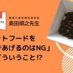 【暇を解消!】『ホンマでっか!?TV』奥田順之獣医師のおすすめグッズ