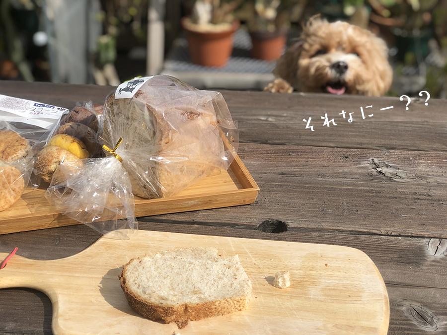 パンとブラン