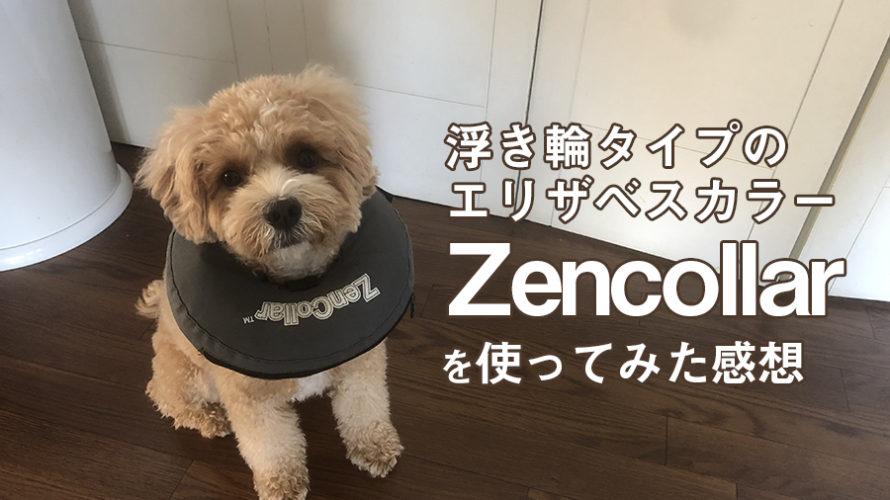 おすすめ!浮き輪タイプのエリザベスカラー【Zencollar】のレビュー